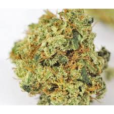 Buy Dutch Treat Online